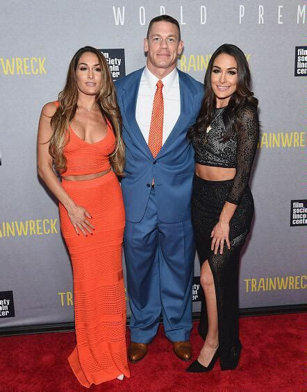 HOTTEST DIVAS: The Bella twins rocking the red carpet this