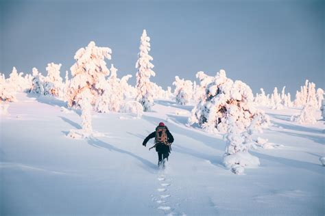Take a white hike – snowshoeing in Lapland — VisitFinland