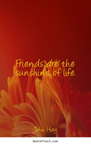 John Hay picture quotes - Friends are the sunshine of life