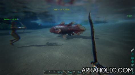 ARK Fishing Guide - How to Catch Fish in ARK Survival