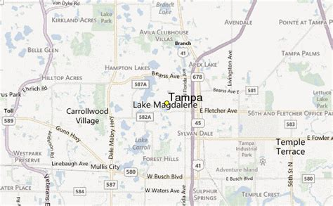 Tampa Weather Station Record - Historical weather for