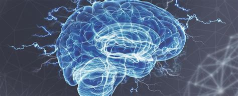 Brain Stimulation in Mice Gives Hope of Restoring Social