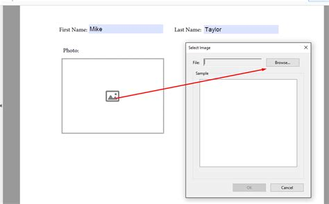 How to insert image programmatically in to AcroForm field